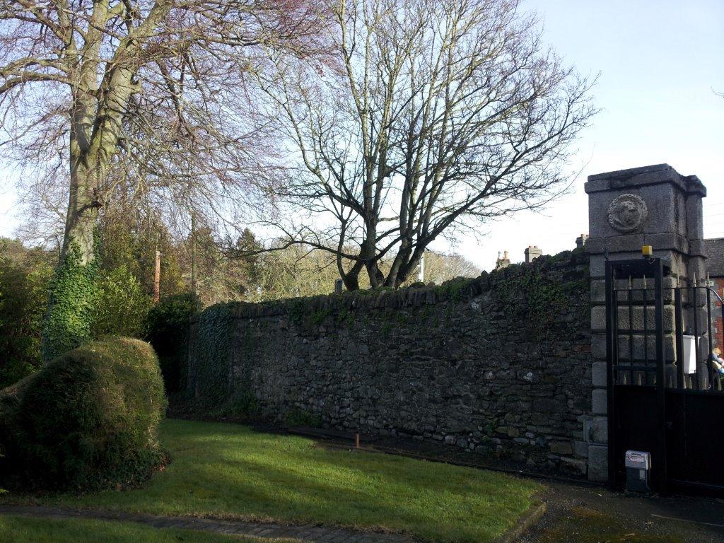 Italian Ambassoders Residence Dublin, Period Wall Repairs